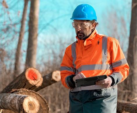 林业现场服务派遣